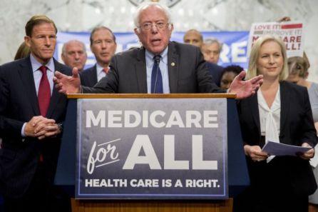 Bernie #1